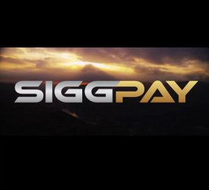 Are You Posting On Multiple Social Media Platforms? SiggPay May Be For You